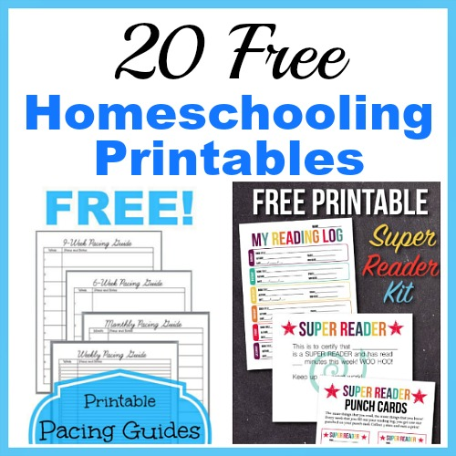 This is a graphic of Free Printable Homeschool Record Keeping Forms regarding student