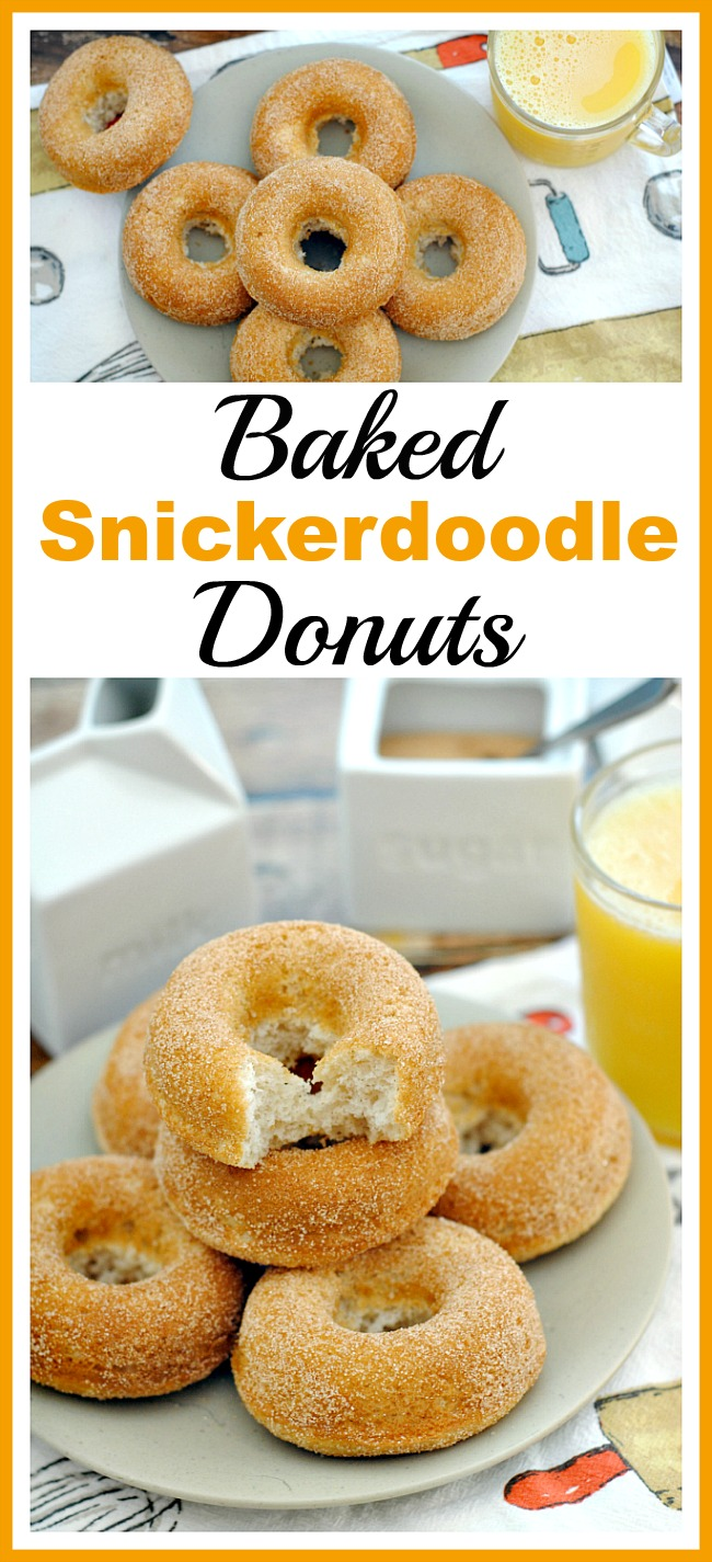 Baked Snickerdoodle Donuts