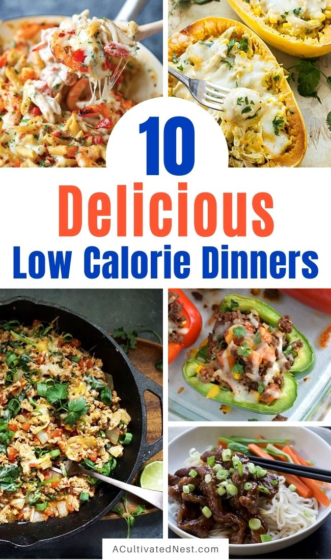 10 Delicious Low-Calorie Dinner Recipes- Healthy food doesn't have to be flavorless! It's so easy to eat healthy when your meal plan is full of these delicious low calorie dinners! | #healthyEating #lowCalorieDinners #lowCalorieRecipes #healthyDinnerIdeas #ACultivatedNest