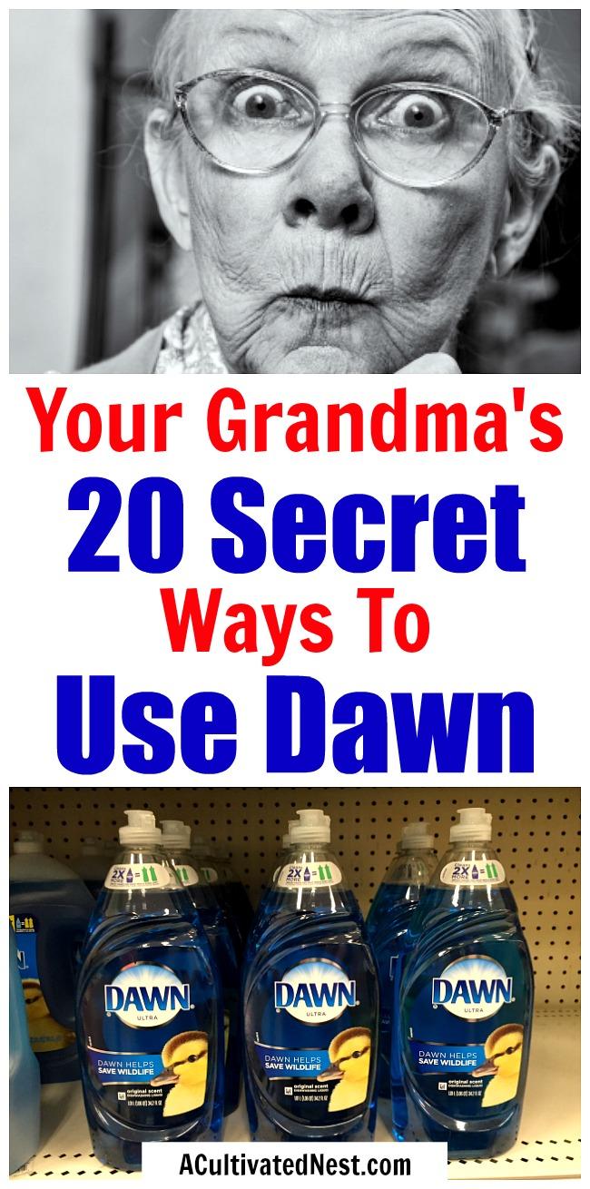 20 Frugal Ways to Use Dawn