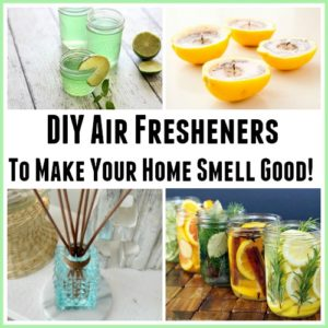 DIY Air Fresheners To Make Your Home Smell Good!