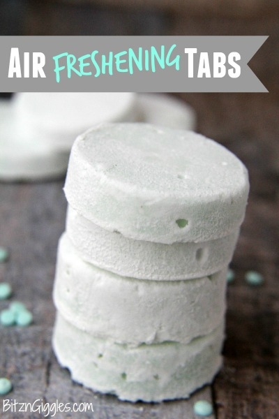 Air Freshening Tablets - These simple DIY Air fresheners are inexpensive to make and will leave your home smelling great in no time!