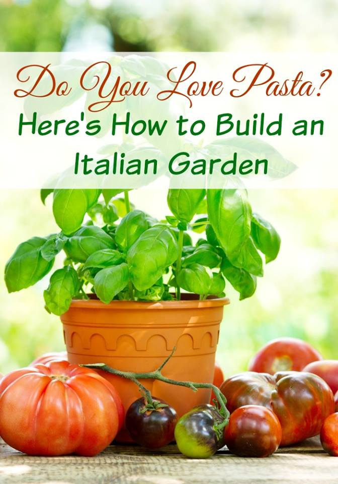 How To Grow An Italian Garden. Love pizza or Italian food? Imagine that you made them with fresh organic vegetables & herbs right from your own garden! growing herbs, container herb garden, DIY garden projects