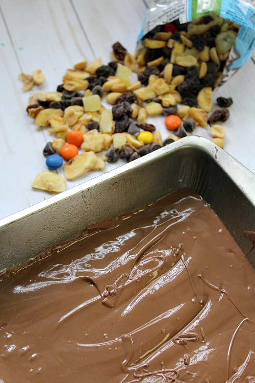 Trail Mix Candy Chocolate Bark- This trail mix candy chocolate bark is the perfect combo of sweet chocolate and crunchy add-ins. And since it's a no-bake recipe, its easy to make!   dessert, snack, nuts, raisins, M&Ms, dried fruit, easy
