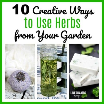 10 Creative Ways to Use Herbs from Your Garden
