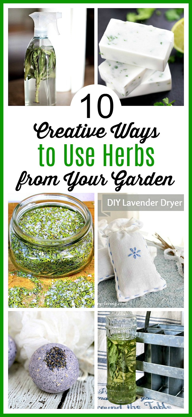10 Creative Ways to Use Herbs from Your Garden- If you grew too many herbs, there are many different, fun ways to put them to use! Check out these creative ways to use herbs from your garden! | ways to use up extra herbs, lavender, sage, rosemary, cilantro, homemade soap, DIY beauty products, grow your own herbs