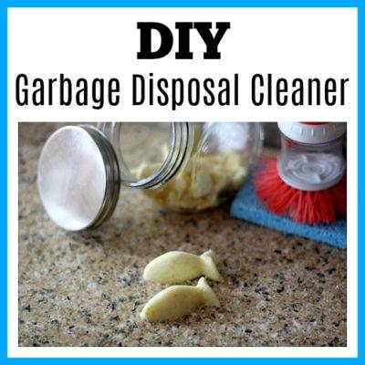DIY Garbage Disposal Cleaner