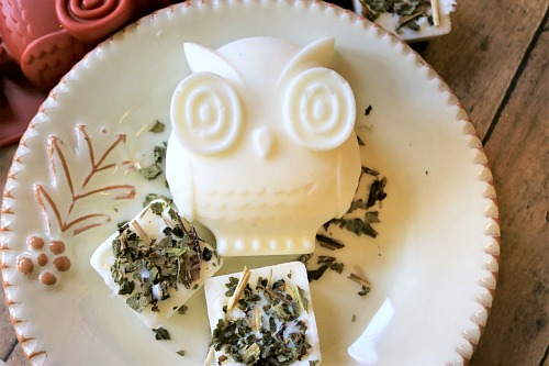 Orange and Comfrey Shea Butter Soap- Keep your skin moisturized this fall and winter with a bar of DIY orange and comfrey shea butter soap! This makes a wonderful homemade gift! | DIY soap, homemade gift, owl shaped soap, craft, essential oil, herbs, #DIY