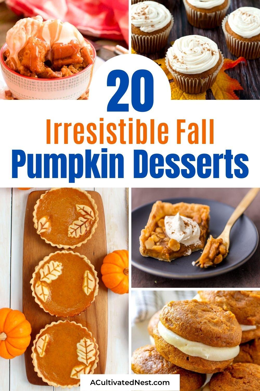 20 Completely Irresistible Pumpkin Desserts