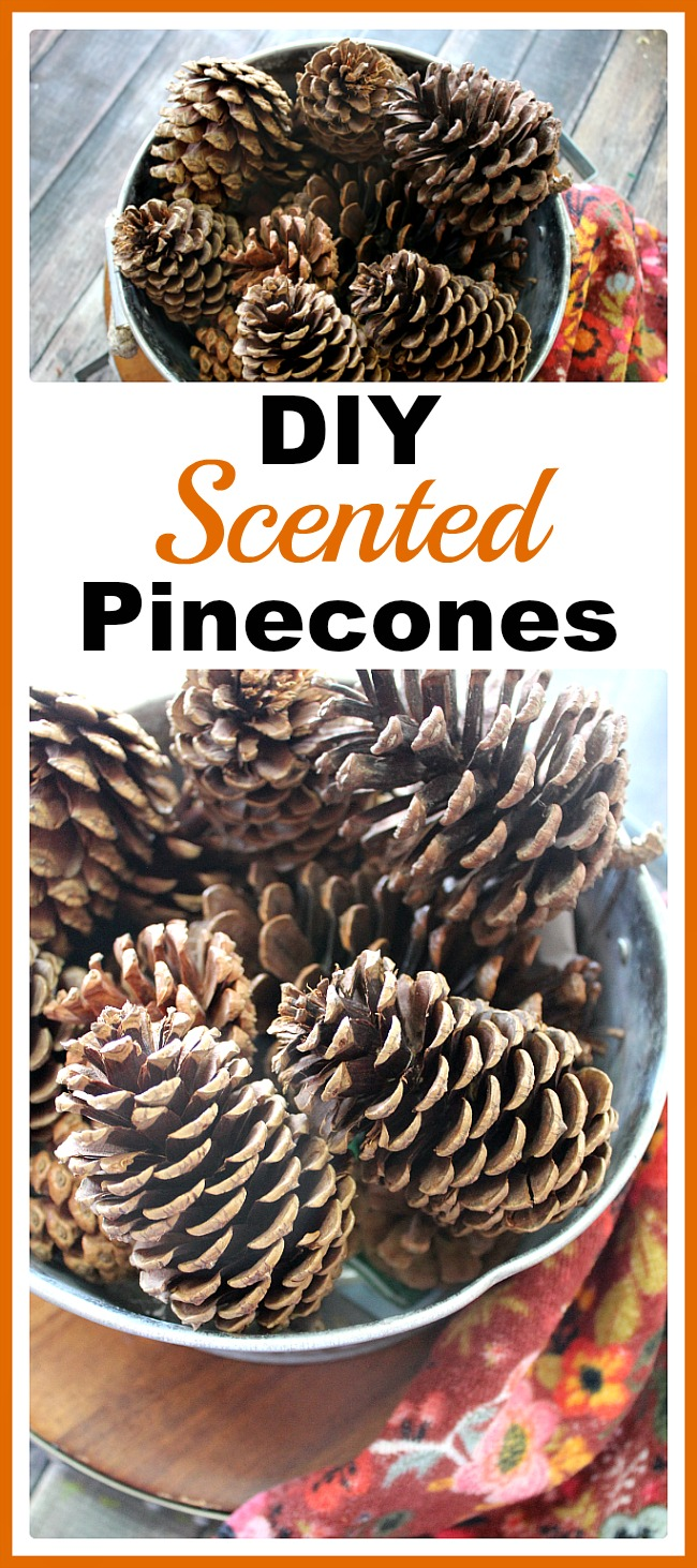 Diy Scented Pinecones Perfect For Your Fall And Winter Decor