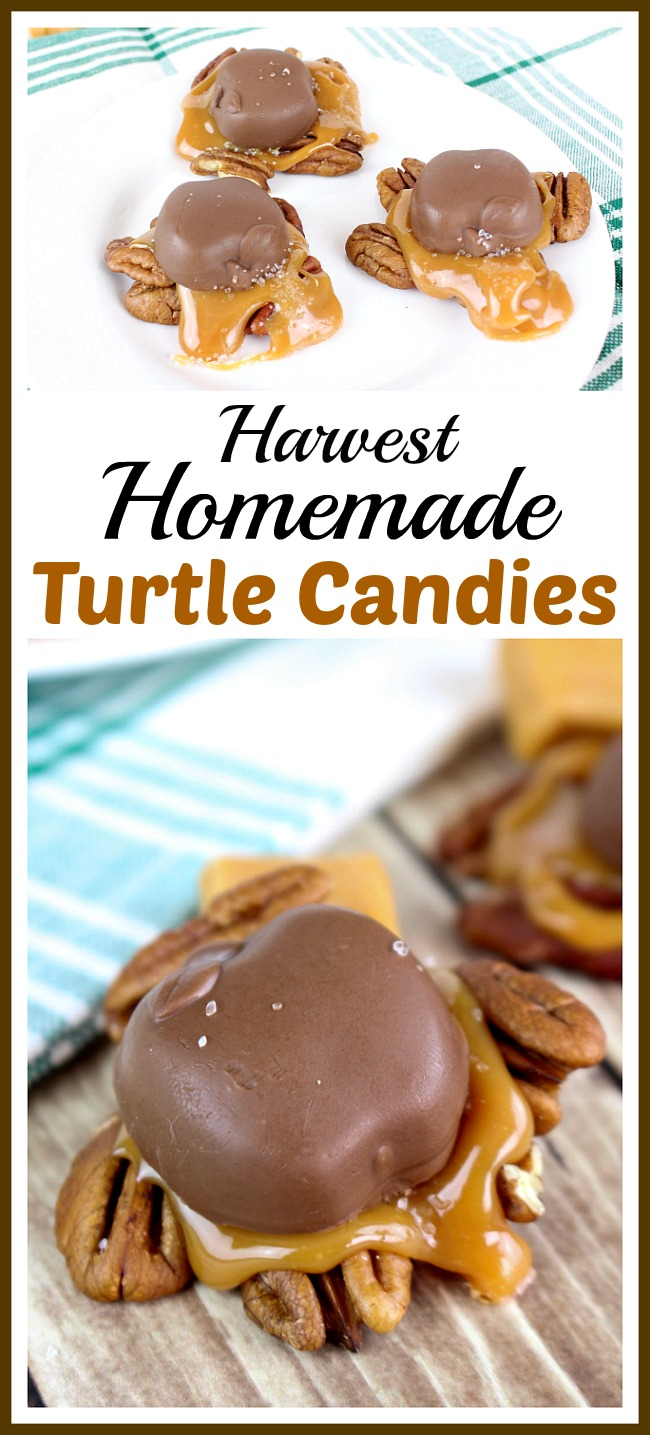 Harvest Homemade Turtle Candies- These harvest homemade turtle candies are a quick, easy, and delicious fall treat! If you like chocolate and caramel, you have to try this recipe! | quick dessert, food, easy autumn recipe, no bake, homemade #candy
