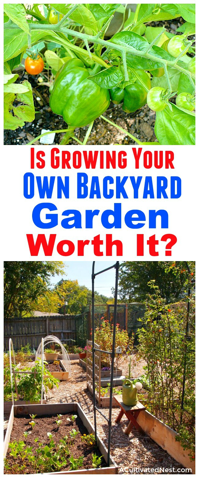 Is Growing Your Own Backyard Garden Worth It?