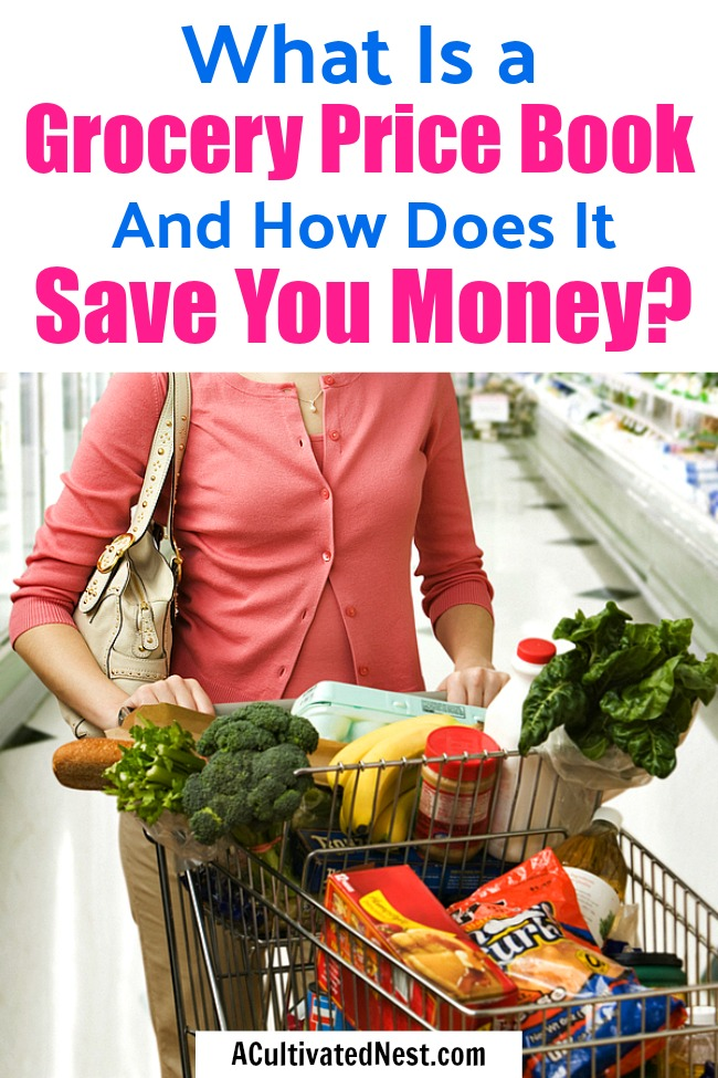 What is a Grocery Price Book and How Does it Save You Money?- If you want an easy way to save money on groceries without coupons, then you should make a grocery price book! A price book is easy to put together, and is an extremely effective non-coupon way to save money on food! | #saveMoney #moneySavingTips #groceries #frugalLiving #frugal #shopping #food #frugality #groceryPriceBook #groceryShopping