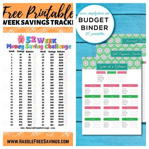 10 Free Printables to Save You Money + 10 More- A Cultivated Nest - These 15 free printables will save you money and keep your financial life organized. They're a must for any budget binder! | #ACultivatedNest