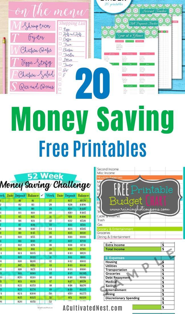 20 Free Printables to Save You Money