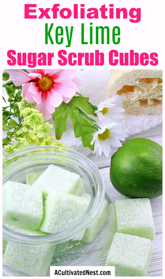 DIY Sugar Scrub Cubes: Key Lime- It's easy to make your own DIY sugar scrub cubes! These exfoliating DIY scrub bars have a lovely key lime scent and color. They also make a great DIY gift!  | sugar scrub bars, homemade body scrub, exfoliate, exfoliating, #bodyScrub #DIY #sugarScrub #beauty #diyGift #homemadeGift