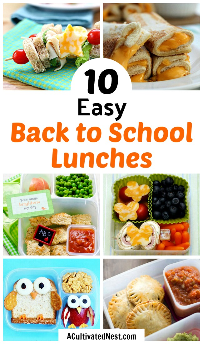 10 Easy Back to School Lunches- These 10 school lunch recipes are perfect for back to school! They're fun, easy to put together, and are filling. Plus, they're delicious! | School lunch ideas that aren't sandwiches, food for kids, #backToSchool #lunch #recipe #food #schoolLunch #school