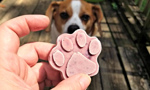 DIY Paw Shaped Frozen Dog Treats- It's easy to make your own delicious and healthy frozen dog treats! These homemade dog pops contain peanut butter and antioxidant rich berries! | frosty dog treat copycat, pupsicle, dog pop, homemade dog treat recipe #recipe #dog #dogTreat #puppy #popsicle #homemade #DIY