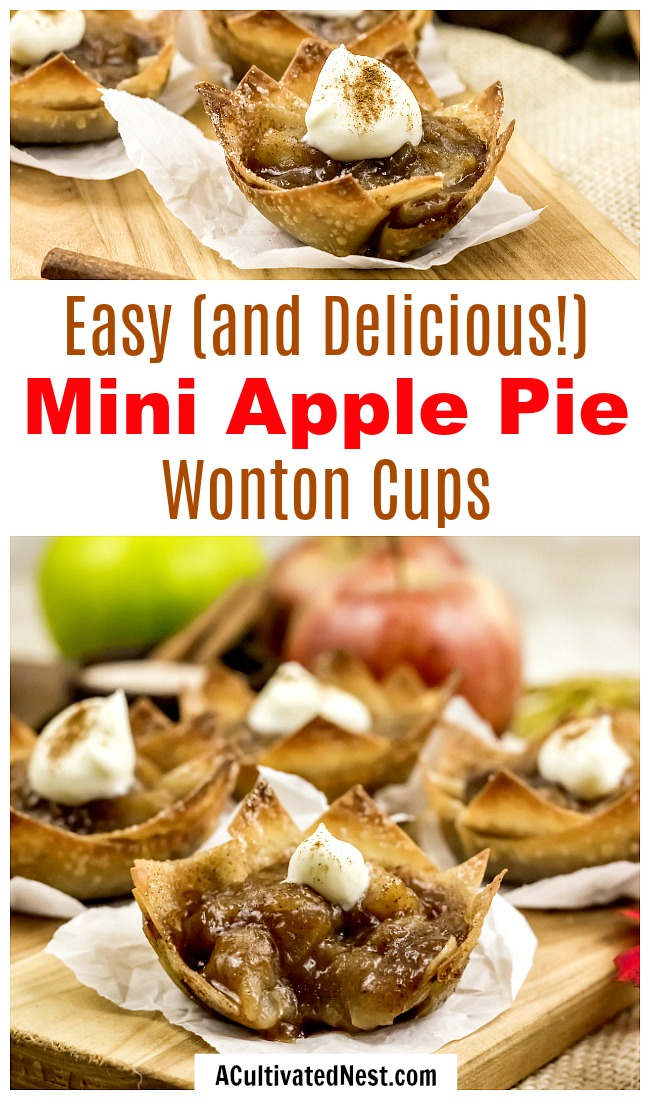 Mini Apple Pie Wonton Cups- This year, try apple pie a different way and make these mini apple pie wonton cups! They're an easy to make fall dessert, and super delicious! | what to make with extra wonton wrappers, use up extra wonton wrappers, #dessert #recipe #appetizer #baking #applePie #food #fall #autumn #apples #wontonWrappers #ACultivatedNest