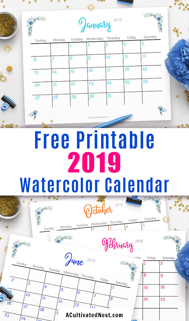 Free Printable 2019 Calendar- Make 2019 your best year yet with this free printable 2019 calendar! It has a beautiful design featuring watercolor flowers! | floral calendar printable, #freePrintable #printable #printableCalendar #freeCalendar #calendar #watercolors #2019