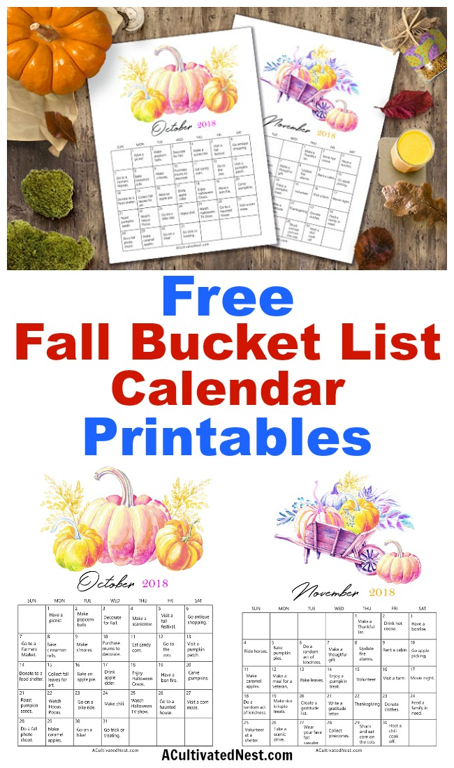 2018 Fall Bucket List Calendar Free Printables- Fall is a short season, but it doesn't have to cost a lot to enjoy it! To make the most of fall on a budget, get this free printable frugal fall bucket list calendar! | free printable 2018 calendar, #freePrintable #fall #frugalLiving #calendar #printable #bucketList #autumn #frugal #printableCalendar #freeCalendar #ACultivatedNest