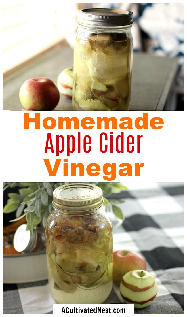 Homemade Apple Cider Vinegar- Store-bought apple cider vinegar can be costly, especially if it's organic. Luckily it's easy to make your own ACN at home! Here is how to make homemade apple cider vinegar! | #appleCiderVinegar #recipe #ACV #vinegar #food #drink #healthy #homemade #frugal #saveMoney #apples #ACultivatedNest