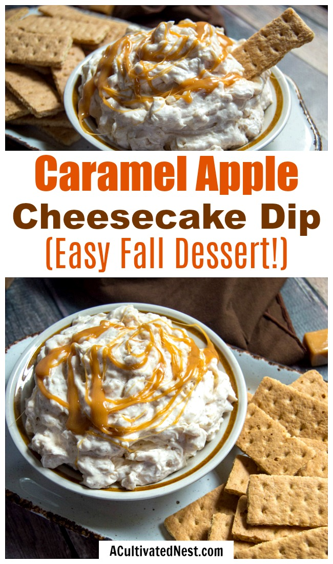 Caramel Apple Cheesecake Dip- This no-bake caramel apple cheesecake dip makes a great fall dessert or party appetizer! Plus, it's easy and inexpensive to make! | #dessert #noBake #recipe #dip #cheesecake #caramel #apple #appetizer #fall #autumn #ACultivatedNest