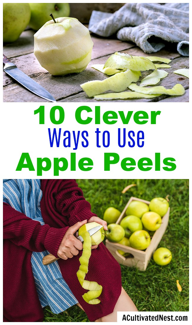 10 Clever Ways to Use Apple Peels