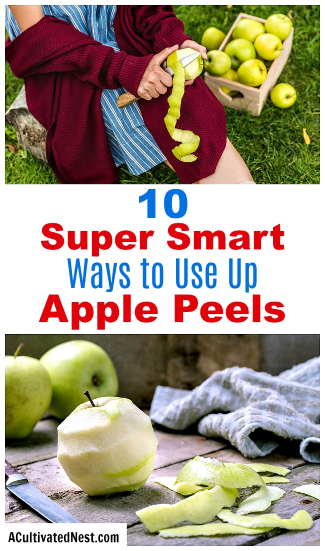 10 Clever Ways to Use Apple Peels- The next time you have extra apple peels left over, don't throw them away! Instead, put them to use with these super smart ways to use apple peels! | apple skins, ways to use apples, use all of an apple, reduce food waste, frugal living, #frugal #apples #ACultivatedNest