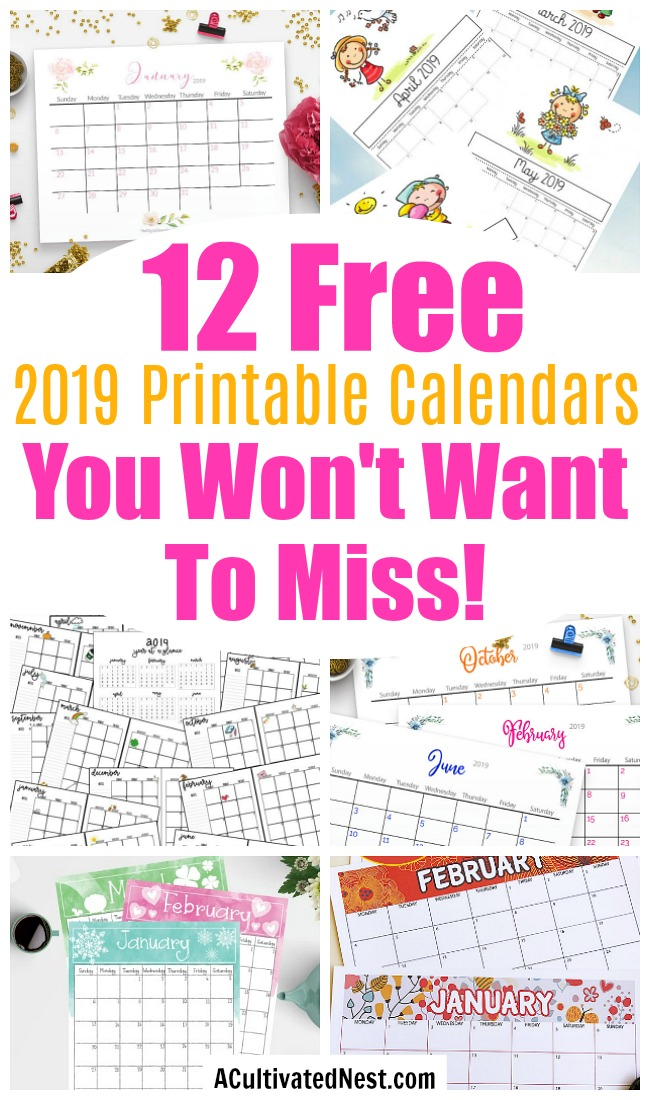 12 Free Printable 2019 Calendars- Why spend money on a calendar from the store, when you can get one of these beautiful free printable 2019 calendars! There are so many to choose from! | 2019 monthly calendar printables to download, coloring calendars, calendars for kids, #freePrintable #calendars #ACultivatedNest
