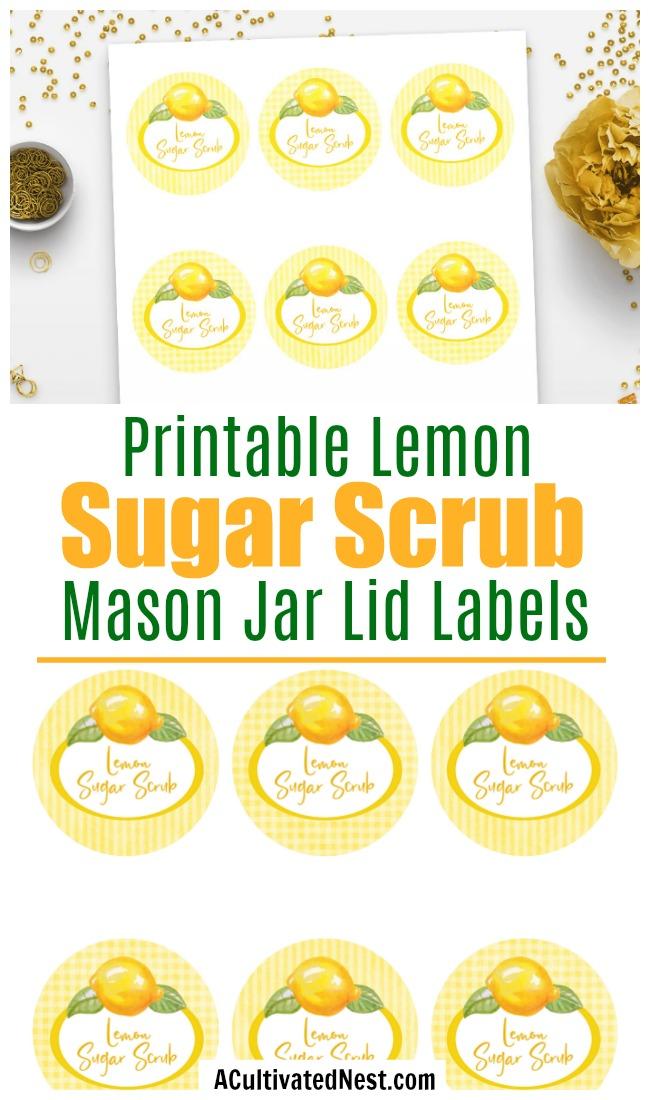 Printable Lemon Sugar Scrub Labels- These printable sugar scrub labels will look beautiful on the top of a Mason jar filled with DIY lemon sugar body scrub! | DIY sugar scrub, homemade gift ideas, Mason jar lid labels, #sugarScrub #bodyScrub #ACultivatedNest