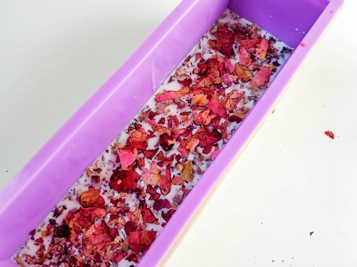 Coconut Rose Soap DIY- If you want a luxurious homemade soap to use or give as a gift, you have to make this coconut rose DIY soap! It uses real rose petals! | DIYs that use essential oils, floral soap, how to make your own soap, melt and pour soap recipes, goat milk soap, #soap #DIY #ACultivatedNest