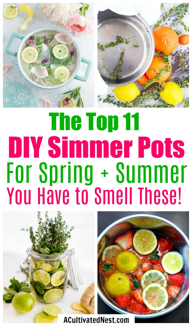 11 DIY Simmer Pot Recipes for Spring and Summer- An easy (and all-natural) way to make your home smell great this spring and summer is with these wonderful smelling DIY simmer pot recipes! | natural air freshener, how to make your home smell good, chemical-free DIY air freshener, #DIY #potpourri #ACultivatedNest