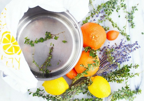 Lemon Lavender Simmer Pot- An easy (and all-natural) way to make your home smell great this spring and summer is with these wonderful smelling DIY simmer pot recipes! | natural air freshener, how to make your home smell good, chemical-free DIY air freshener, #DIY #potpourri #ACultivatedNest