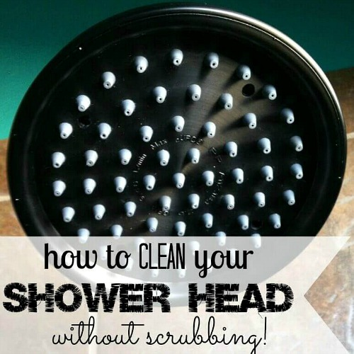 Shower Head Cleaning Hack- You don't have to spend a lot of time keeping your home's bathrooms clean, if you know these 10 awesome bathroom cleaning hacks! | bathroom cleaning tips, how to keep bathroom clean with boys, #cleaningTips #cleaning #ACultivatedNest