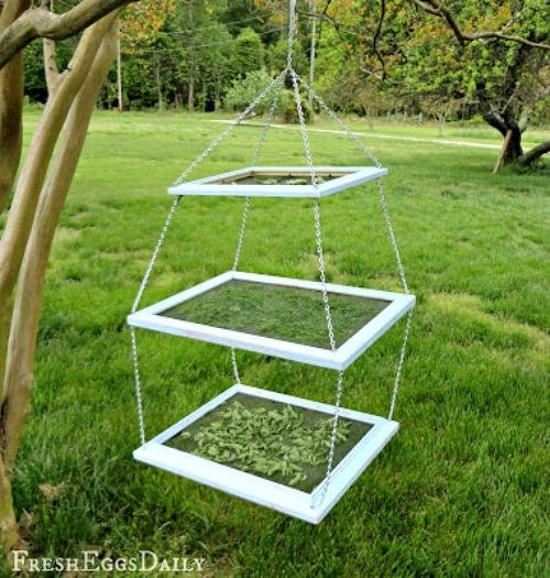 Herb Drying Rack Made From Frames- An inexpensive and easy way to make pretty decor is with dollar store materials! Check out all of this pretty home decor made with dollar store frames! | dollar store decor DIY projects, dollar store crafts, upcycle old frames, #dollarStore #dollarTree #DIY #decor #AcultivatedNest