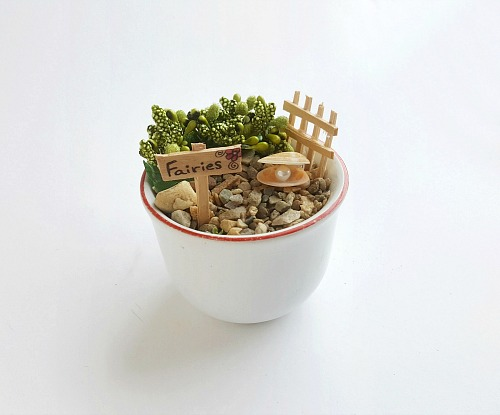 How to Decorate a Fairy Garden- If you want a cute and creative decor piece for your home, you have to make this DIY teacup fairy garden! It's so easy to make, and so pretty when finished! | DIY fairy garden accessories, indoor gardening, container garden, DIY fairy garden props, #fairyGarden #teacupGarden #DIY #ACultivatedNest