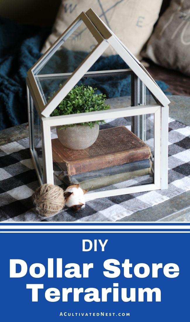 Dollar Store DIY Terrarium- An easy and inexpensive way to update your home's décor is with dollar store DIY projects! This dollar store DIY terrarium would look gorgeous in any home! | #DIY #dollarStoreDIY #diyProejcts #diyDecor #ACultivatedNest