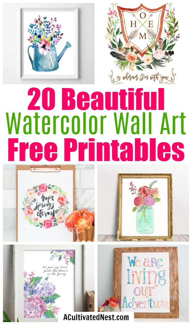 20 Gorgeous Watercolor Wall Art Free Printables- Free printables are a great way to update your home's decor on a budget! If your home's art needs a refresh, check out these 20 beautiful watercolor wall art free printables! | watercolor art prints, floral art prints, spring wall art, summer wall art, flower art prints, #wallArt #freePrintable #decor #ACultivatedNest