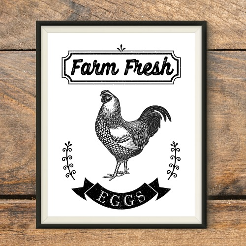 Free Printable Farmhouse Chicken Wall Art- Add some lovely farmhouse style decor to your home with this free printable farmhouse chicken wall art! This Farm Fresh Eggs sign printable would look especially lovely in your kitchen! | farmhouse decor wall art, farm animal wall art,#freePrintable #freePrintables #farmhouseStyle #ACultivatedNest