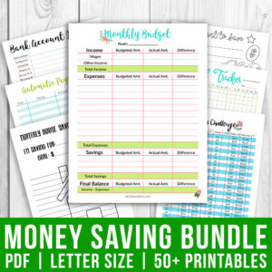 The Big Money Saving Bundle