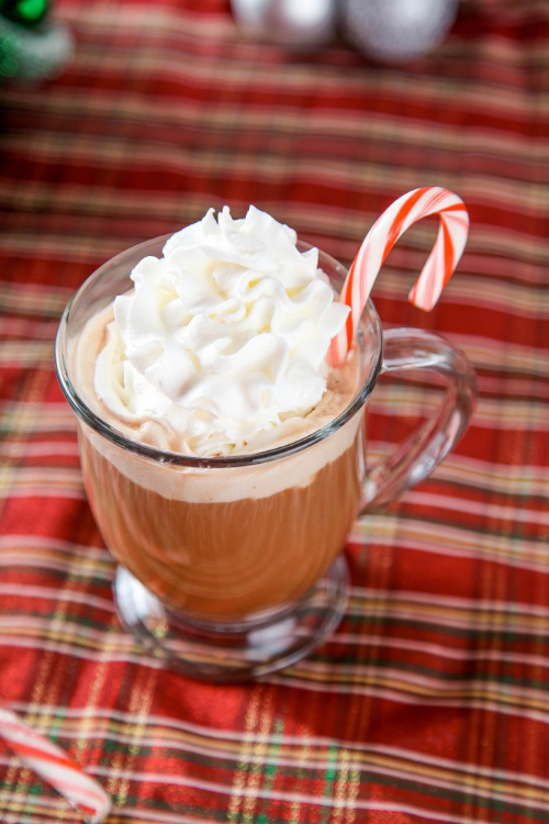 Peppermint Mocha Recipe- This is the ultimate list of easy and delicious Christmas drink recipes. Serve them at your next holiday party and everyone will rave about them for sure! | holiday drink recipes, nonalcoholic drinks, kid friendly drinks, hot drinks, cold drinks, #recipe #drinks #ChristmasDrinks #alcoholicDrinks #ACultivatedNest