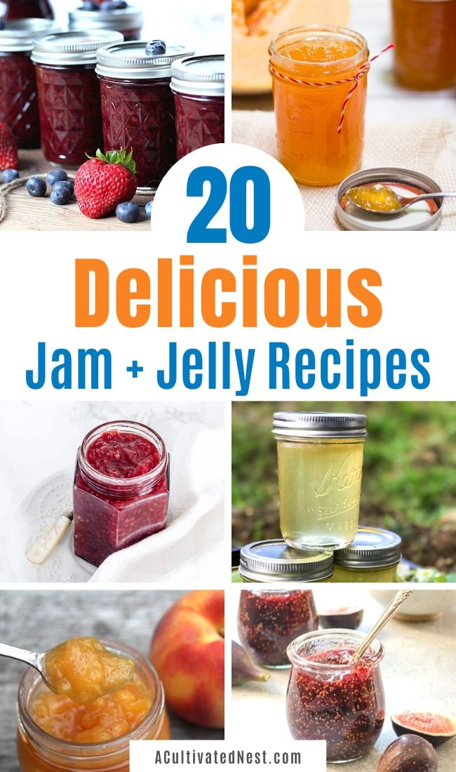 20 Delicious Homemade Jams and Jellies- If you want to save money and make something delicious at the same time, you have to make some of these delicious homemade jams and jellies! They're so flavorful, and easy to make! | #jam #jelly #homemade #recipe #ACultivatedNest
