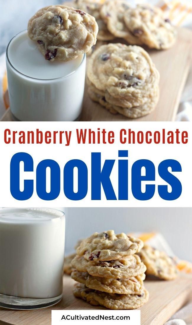 Delicious Cranberry White Chocolate Chip Cookies