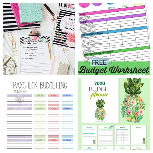 20 Free Budgeting Template Printables- If you want to get your finances organized and start working toward financial freedom, then you need to check out these free printable budget templates! | budgeting printables, budget binder printable, family finance planner printable, #freePrintables #freePrintable #budgeting #budget #ACultivatedNest