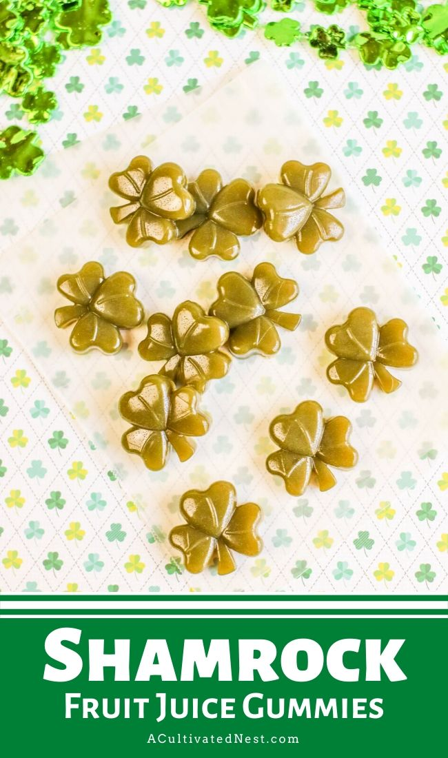 Shamrock Fruit Juice Gummies- If you want a special treat for St. Patrick's Day, you have to make these shamrock fruit juice gummies! They're very easy to make and only take 3 ingredients! | #gummies #StPatricksDay #recipe #homemade #ACultivatedNest
