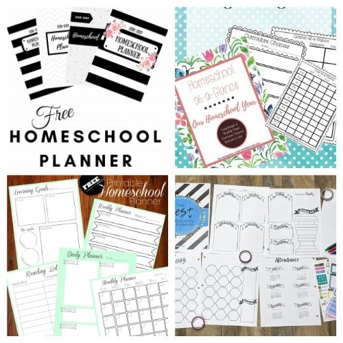 20 Free Printable Homeschool Binders- These free printable homeschool planners are a wonderful way to get organized and prepared. They're perfect for homeschooling on a budget! | #freePrintable #freePrintable #homeschooling #homeschoolPlanner #ACultivatedNest