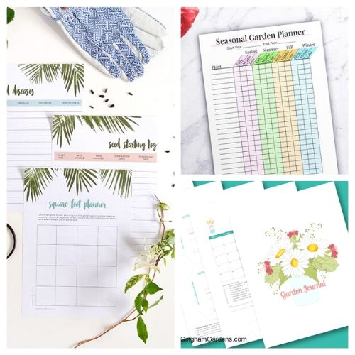 10 Free Printable Garden Planners- These free printable garden planners will help you plan your best garden ever! Whether you're growing vegetables or flowers, they're sure to help! | #gardening #gardenPlanner #gardeningTips #vegetableGarden #ACultivatedNest