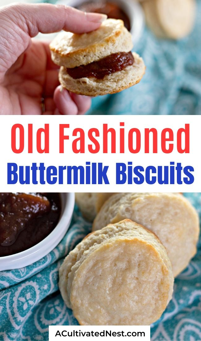 Old Fashioned Buttermilk Biscuits- If you want to make something yummy for breakfast or as a side, you need to make these flaky old fashioned buttermilk biscuits! They're really easy to make and taste delicious ! | #recipeIdeas #biscuit #baking #bread #ACultivatedNest