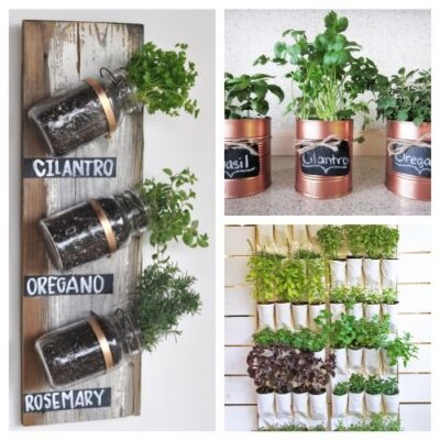 20 Easy DIY Herb Garden Ideas - You'll always have fresh herbs on hand when you make any of these DIY Herb Garden Ideas! They are so simple and add style to your space. #ACultivatedNest